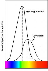 Human Eye Night Vision